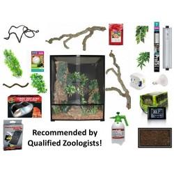Chameleon Deluxe Display Starter Kit