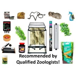 Crested Gecko Complete Kit - Exo Terra