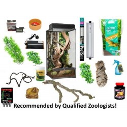 Crested Gecko Complete Kit - X-Large