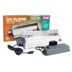 Arcadia UV Flood 12% 24w