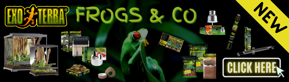 FROGS & CO