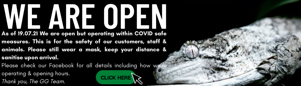COVID OPERATING REOPENING
