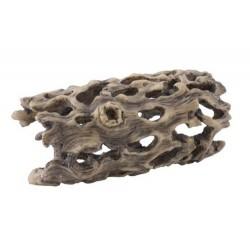 Exo Terra Cholla Cactus Skeleton (Small)