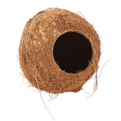 Whole Coconut Hide