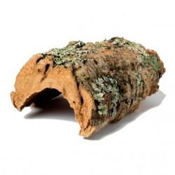 Cork Bark (Round) - SIZES AVAILABLE