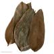 Natural Soursop Leaves
