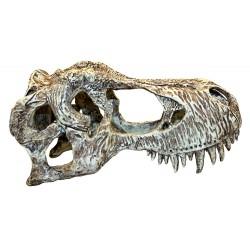 Komodo T Rex Skull