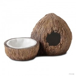 Coconut Hide & Water Dish - Frogs & Co