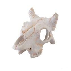 Exo Terra Buffalo Skull (Small)