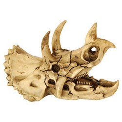 Repstyle Triceratops Skull