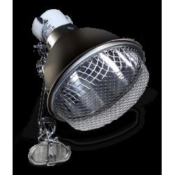 Arcadia 14cm Clamp Lamp - Graphite