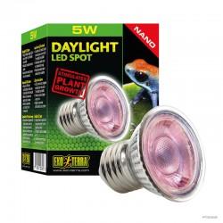 Daylight LED Spot Nano 5W - Frogs & Co