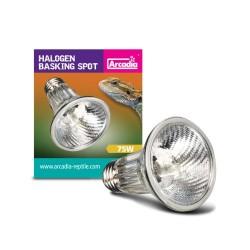 Arcadia Halogen Basking Spot Bulb - 75w