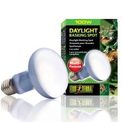 Exo Terra Daylight Basking Bulb - 100w