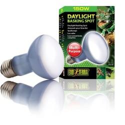 Exo Terra Daylight Basking Bulb - 150w