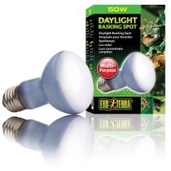 Exo Terra Daylight Basking Bulb - SELECT WATTAGE