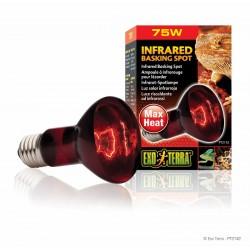 Exo Terra Infrared Heat Bulb