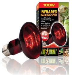 Exo Terra Infrared Heat Bulb - 100w