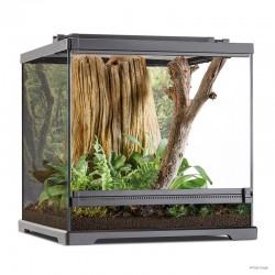 Dart Frog Terrarium - Frogs & Co