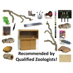 X-Large Snake Complete Kit (Vivarium)