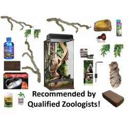 Treefrog Starter Kit - Large