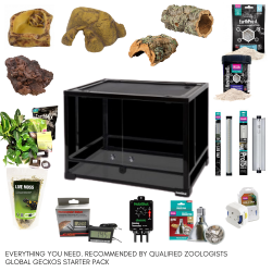 BioActive African Fat Tailed Gecko Complete Kit