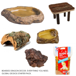 Bearded Dragon Decor Pack - S & L