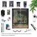 Chameleon Starter Kit - Display