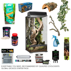 Crested Gecko Complete Kit - XL