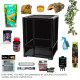 Crested Gecko Complete Kit - Habistat Black