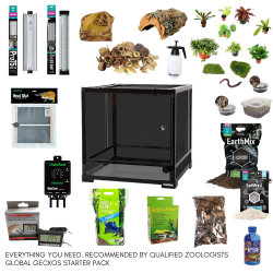 BioActive Dart Frog Complete Starter Kit - Small