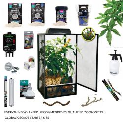 Chameleon Starter Kit - Medium