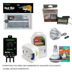 Tortoise Electrics Pack
