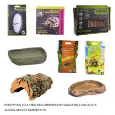 Tortoise Mediterranean Décor Pack (Tortoise Table)