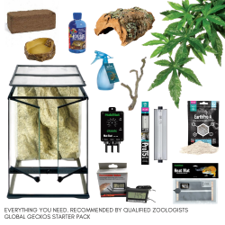 Tree Frog Complete Kit - M