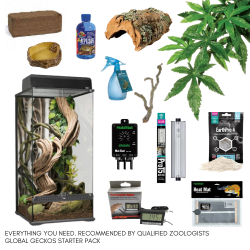 Tree Frog Complete Kit - L