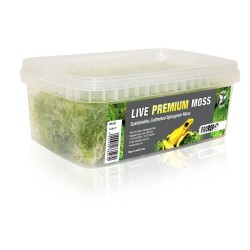 Live Premium Moss (1L)