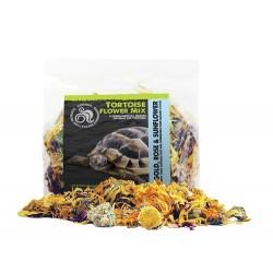 Komodo Tortoise Flower Mix - 60g