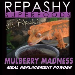 Repashy Crested Gecko - Mulberry Madness 3oz / 6oz