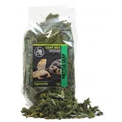 Komodo Nettle Leaf - 100g