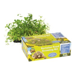 Tortoise Feed Growing Kit