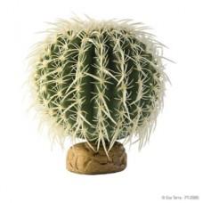 Barrel Cactus - M
