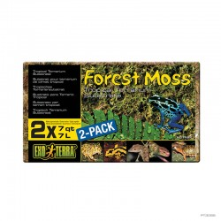 Forest Moss 2 pack - Frogs & Co