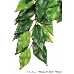 Exo Terra Silk Plant Ficus