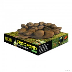 Frog Pond - Select Size - Frogs & Co